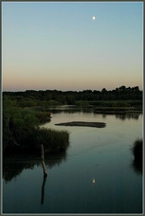 CP-DSC_8574-reflet lune