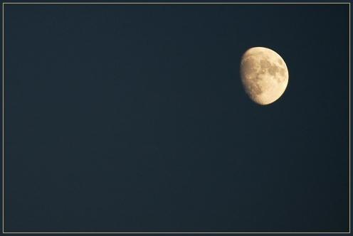 CP-DSC_8578-lune