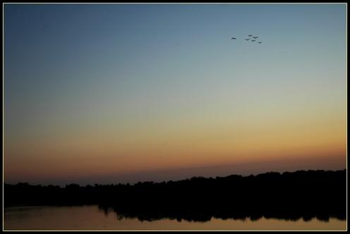 CP-DSC_8585-dernier vol du soir