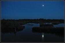 CP-DSC_8596-clair de lune