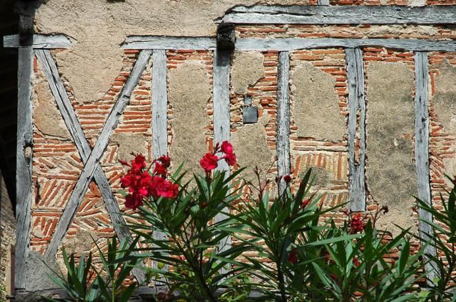 CP-DSC_9167-colombages, briquettes & lauriers roses