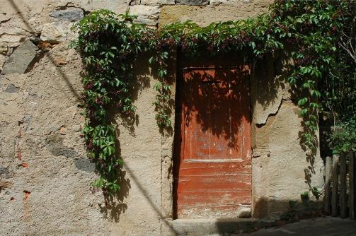 CP-DSC_9208-porte rouge, plante grimpante & ombre fil