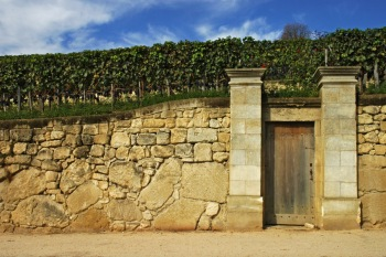 CP-DSC_9328-porte, mur & vigne