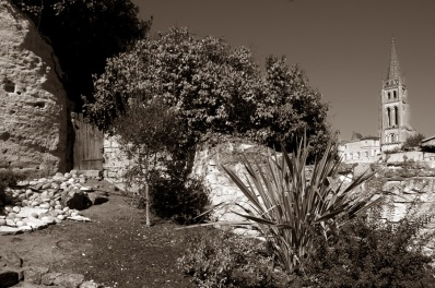 CP-DSC_9524-jardin & clocher sépia