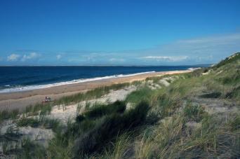 CP-DSC_9597-plage & dune
