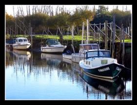 CP-IMG_1695-pinasse & bateaux à quai Biganos
