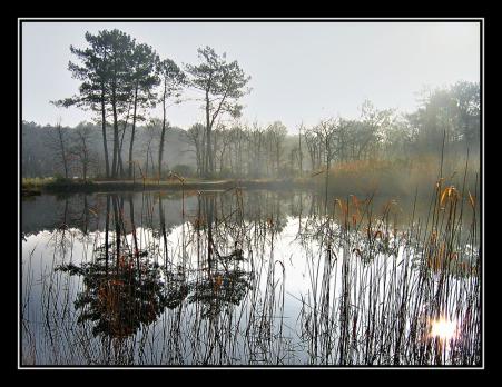 CP-IMG_2646-lac contrejour