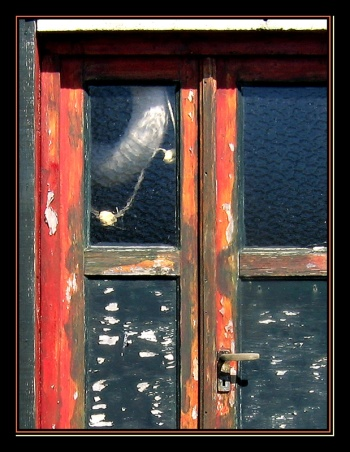 CP-IMG_5827-porte vitrée & bouée REC