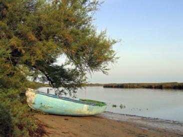 CP-IMG_5964-barque bleue de la Leyre