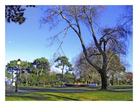 IMG_2851-pinasse du parc