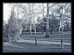 IMG_2863-reverbèredu parc N&Bleu cadre noir