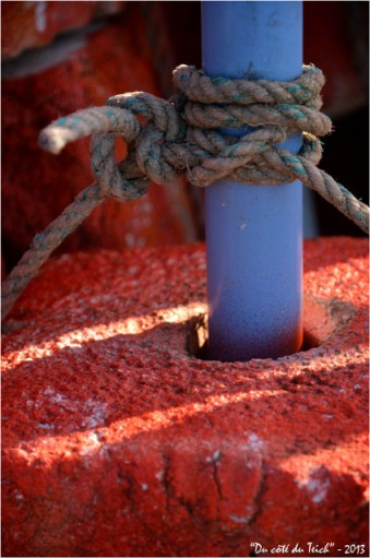 BLOG-DSC_19884-flotteur rouge balise