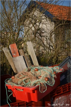 BLOG-DSC_19897-caisses filets et planches cabane port la Teste