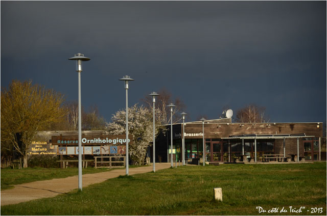BLOG-DSC_20302-entrée réserve ornitho le Teich