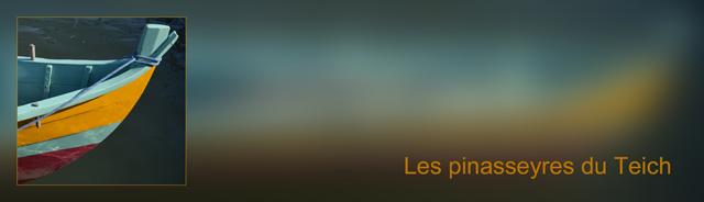 Asso-DSC_06709-bannière pinasseyres fond flou 2 Arial_hf