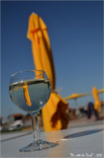 BLOG-DSC_21128-verre vin blanc terrasse la baraque à huitres port Larros