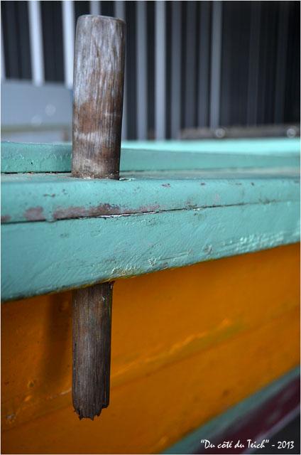BLOG-DSC_21136-pinassotte du Teich