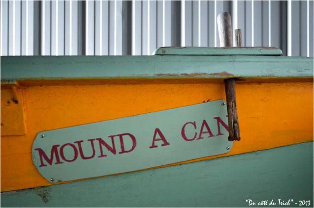 BLOG-DSC_21150-présentation pinassotte du Teich ex Mound A Can
