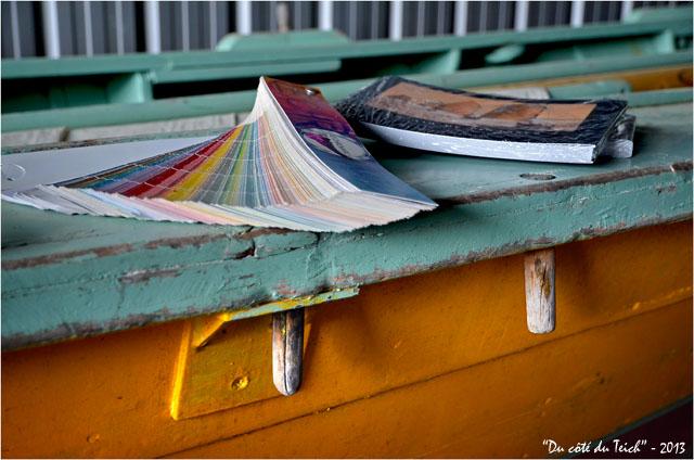 BLOG-DSC_21151-pinassotte du Teich nuancier peintures et livre photos Franck Perrogon