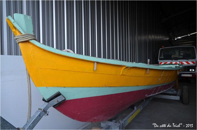 BLOG-DSC_21162-pinassotte du Teich