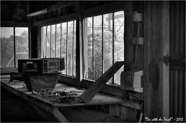 BLOG-DSC_21244-cabane abandonnée N&B