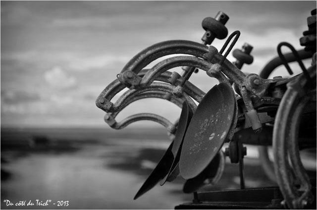 BLOG-DSC_21248-peseuse calibreuse rivages Meyran N&B