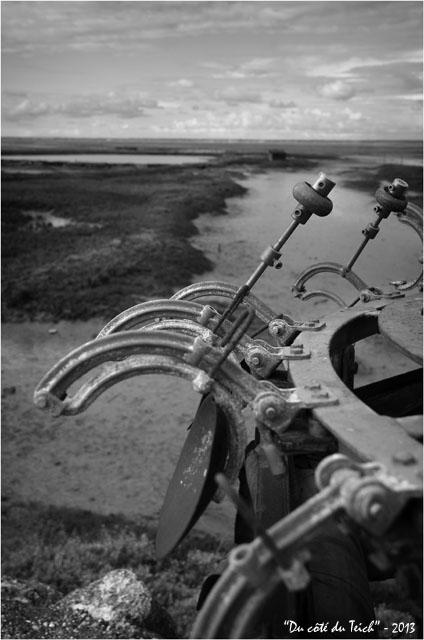 BLOG-DSC_21251-peseuse calibreuse rivages Meyran N&B