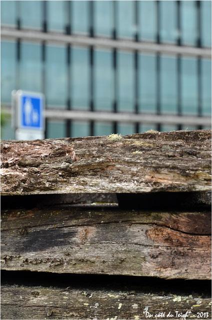 BLOG-DSC_21562-palissade jardin botanique Bordeaux Bastide panneau et façade vitrée