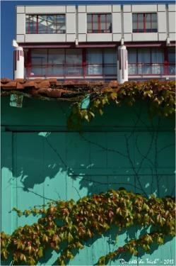 BLOG-DSC_22213-cabane ostréicole et immeuble pointe Aiguillon