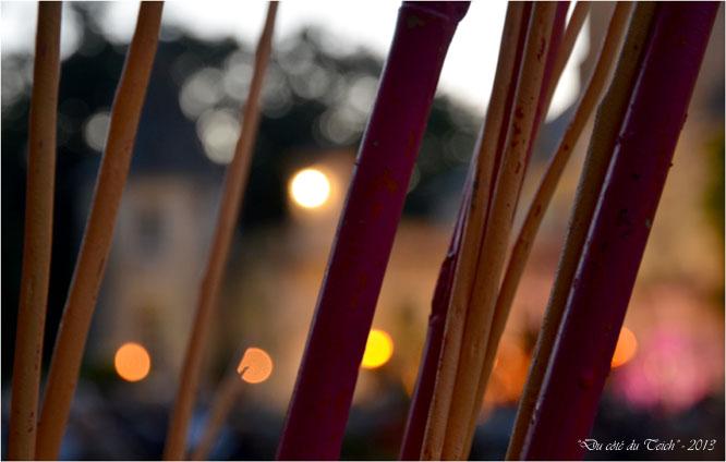 BLOG-DSC_22944-décor escapades musicales 2013 et lumières château de Ruat le Teich