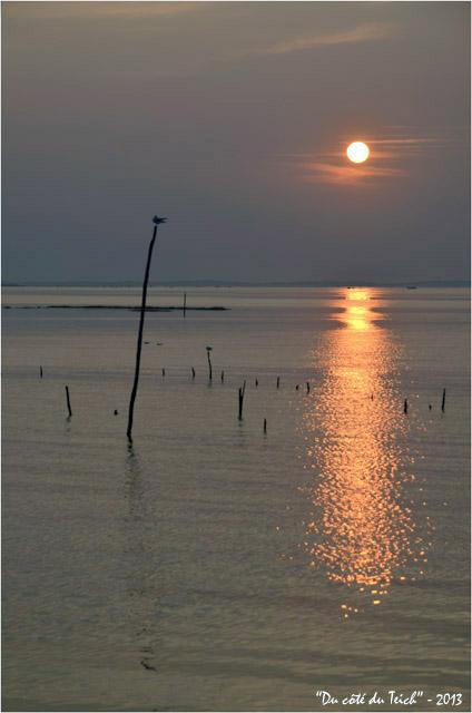 BLOG-DSC_23287-coucher de soleil port Larros