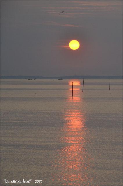 BLOG-DSC_23292-coucher de soleil port Larros