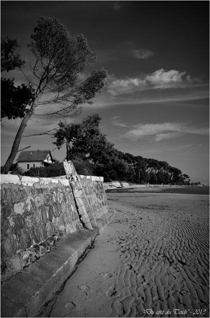 BLOG-DSC_24987-échelle et maison plage Taussat N&B2