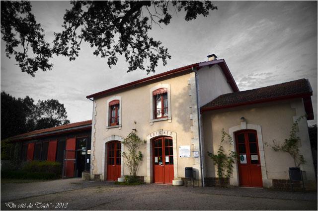 BLOG-DSC_25468-gare Sabres écomusée Marquèze N&C