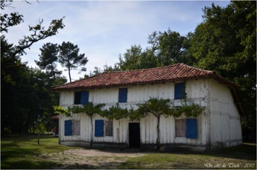 BLOG-DSC_25282-maison du métayer Marquèze