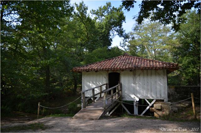BLOG-DSC_25328-moulin Marquèze