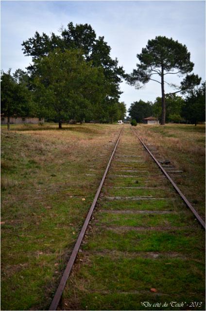 BLOG-DSC_25419-voie ferrée Marquèze