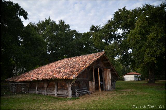 BLOG-DSC_25420-bergerie et maison du métayer Marquèze