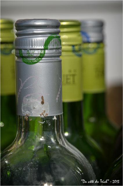BLOG-DSC_25632-bouteilles vides Tariquet
