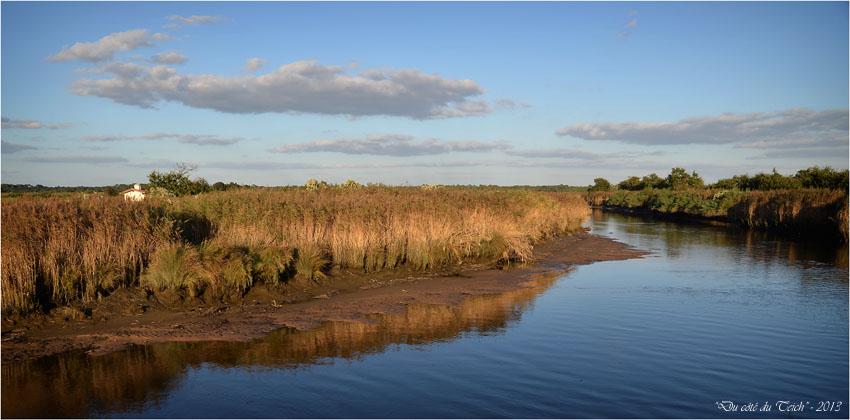BLOG-DSC_25780-leyre sentier le Teich