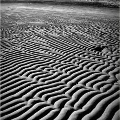 BLOG-DSC_26396-sable Taussat marée basse N&B