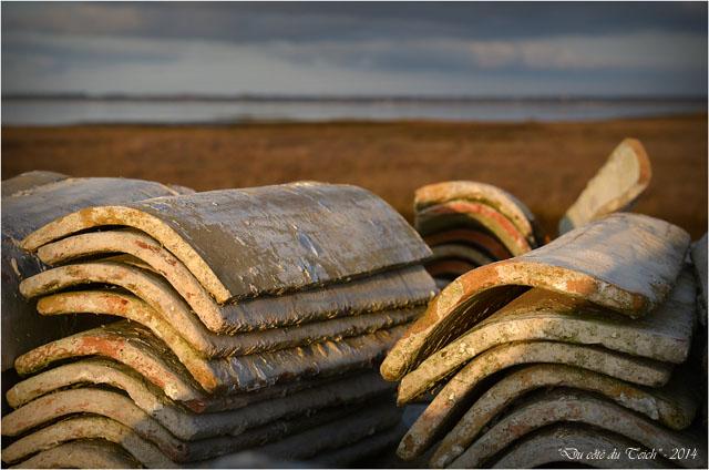 BLOG-DSC_26536-tuiles chaulées rivages Barbotière