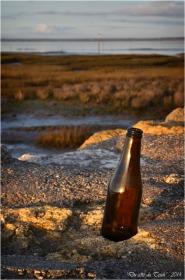 BLOG-DSC_26540-bouteille bière rivages Barbotière