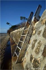 BLOG-DSC_26570-plage Taussat