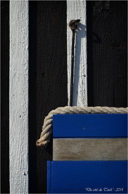 BLOG-DSC_26954-Amaïta Lapin Blanc