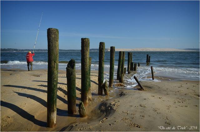 BLOG-DSC_27154-pointe Cap-Ferret et dune du Pyla
