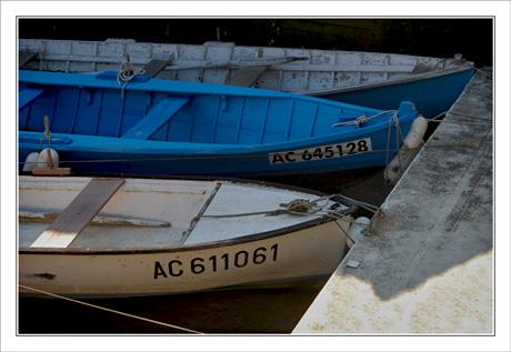 BLOG-DSC_0032-barques port Taussat