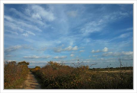 BLOG-DSC_0315-chemin & nuages