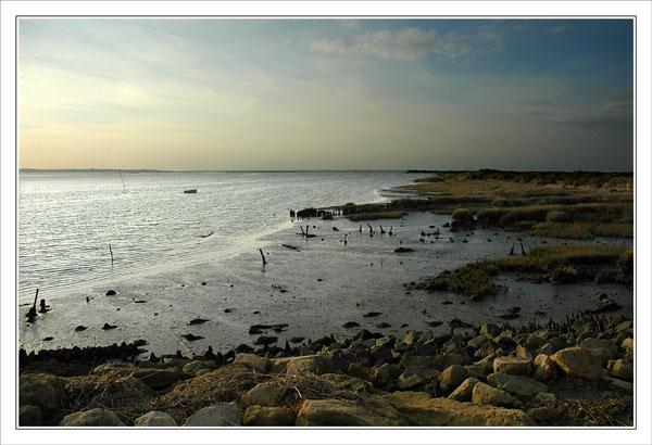 BLOG-DSC_0370-littoral Graveyron vue Arcachon & Bassin