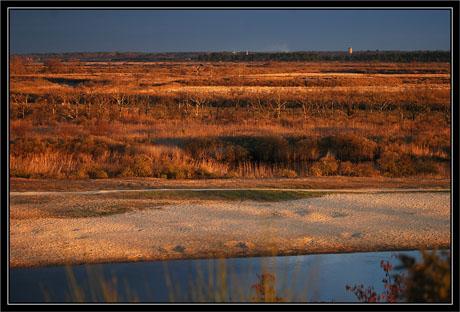 BLOG-DSC_0769-plan d'eau,Leyre, plaines et Audenge